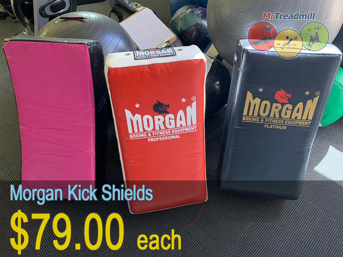 Morgan Kick Shields